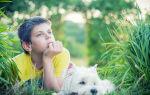 Ребенок и страшная весть о разводе. Как смягчить удар