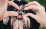 Обручальное кольцо после развода — что с ним делать?