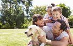 Кризис в семье 10 лет — кто виноват и что делать?