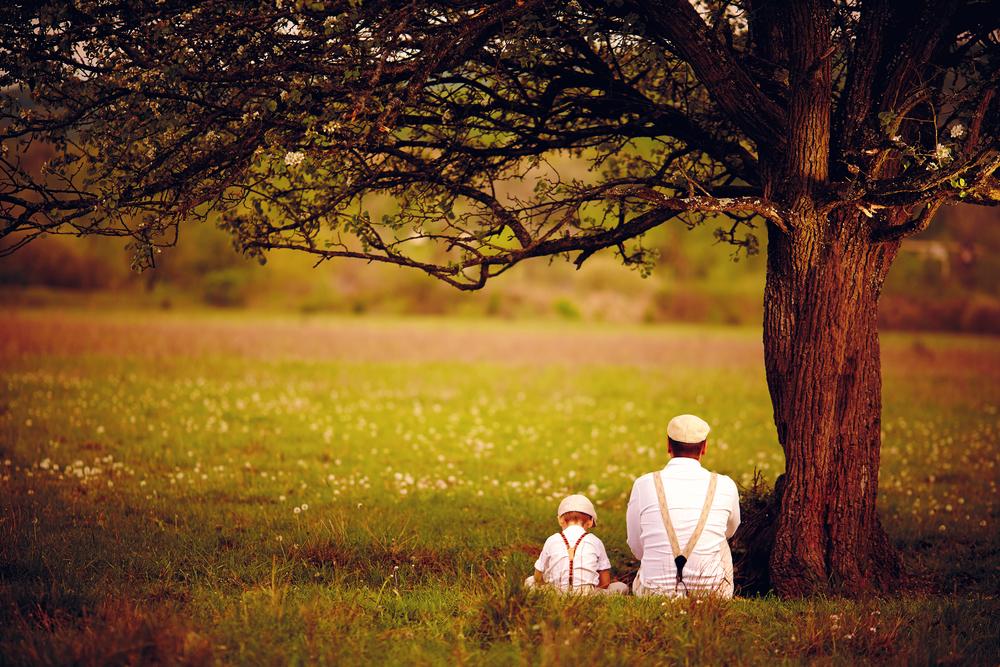 ребёнок с отцом сидят на траве
