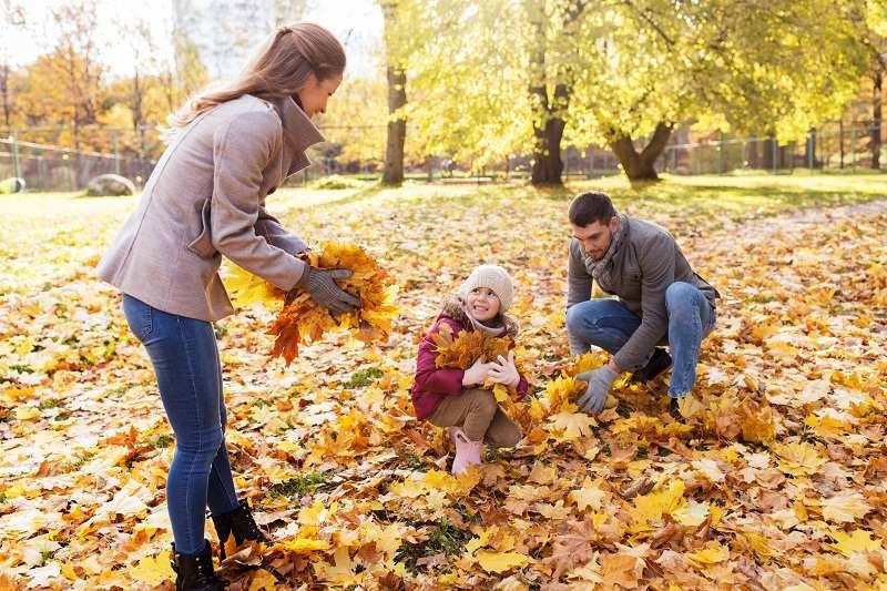 Муж со счастливой семьей собирает желтые листья