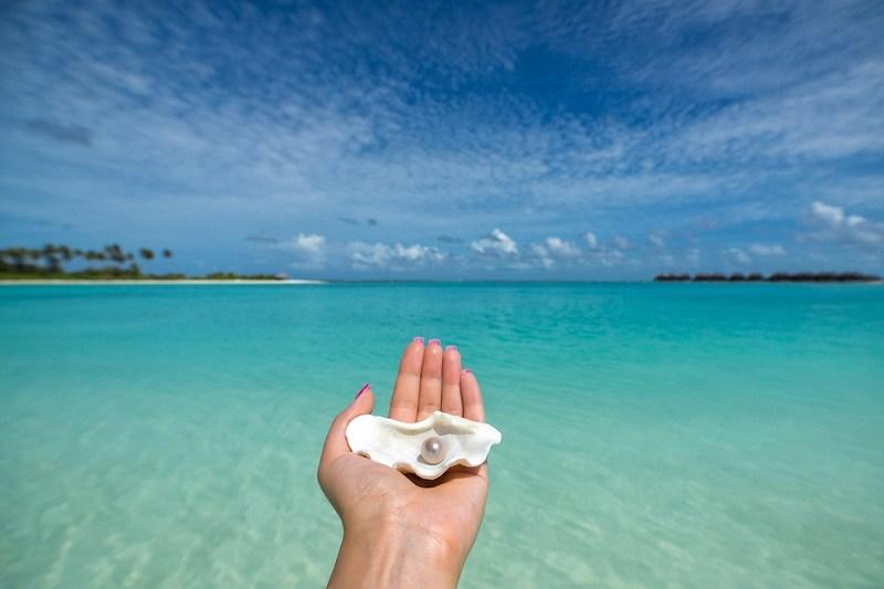 Жемчуг в руке на фоне моря - растет в море около тридцати лет